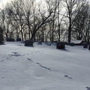 Cmentarz parafii Sacred Heart Church w Castleton 2.02.2019