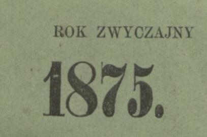 Przasnysz ok. roku 1875