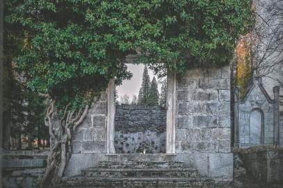 Szukając grobów krewnych – Suwińscy