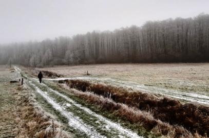 Rezerwat Olszyny Rumockie